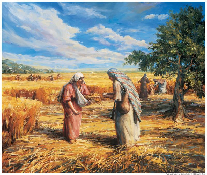 Espigando de las Escrituras un método para aprender de ellas
