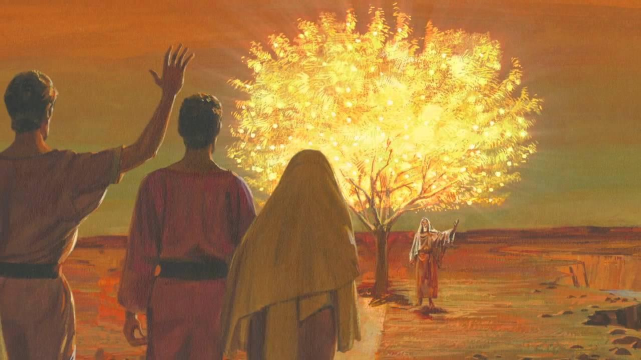 El Libro de Mormón – Lección 3 – La visión del árbol de la vida