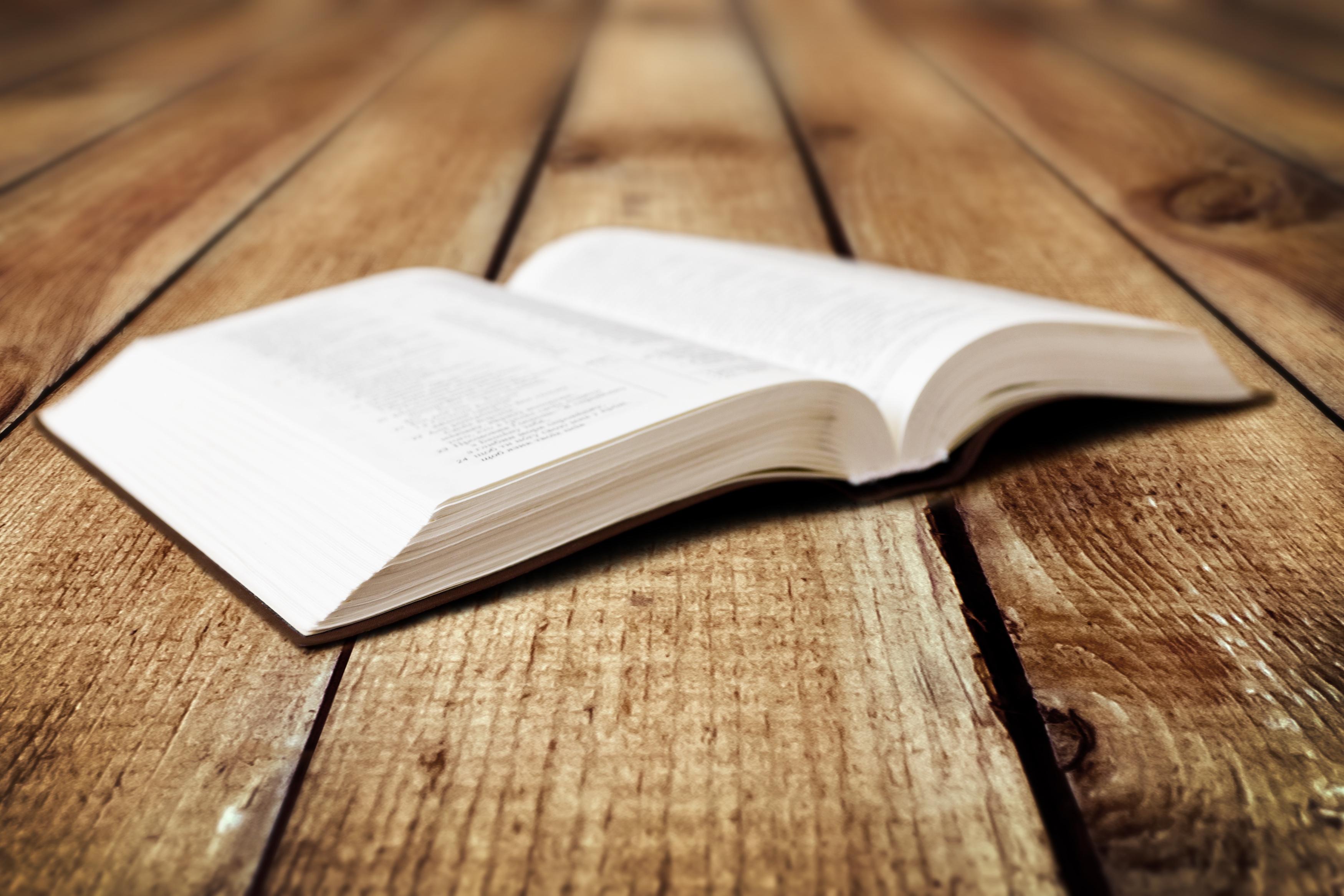 EL Libro de Mormón disipó mis dudas sobre la iglesia mormona