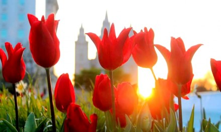 El 6 de abril es un día trascendental y a la vez común para el mundo