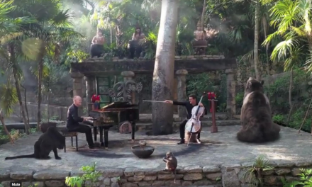 The Piano Guys graban extraordinario videoclip en México