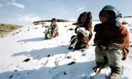 Mormones realizan donación para los afectados por las heladas en Perú