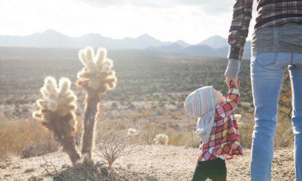 6 consejos para padres solteros