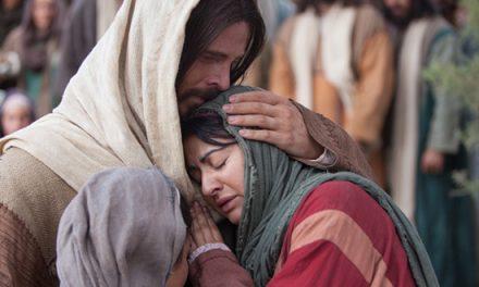 16 de diciembre: Ilumina el Mundo mostrando compasión