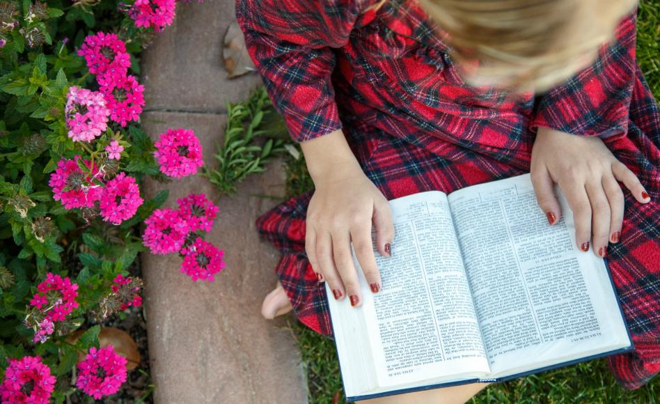 la compañía del Espíritu Santo al leer las escrituras