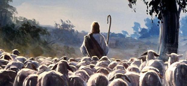 """Lección 12 de Doctrina y Convenios: """"… el recogimiento de mi pueblo"""""""