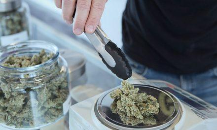 Mormones y la marihuana medicinal