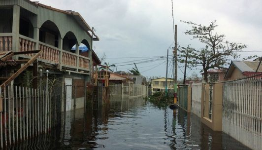 misioneros evacuados