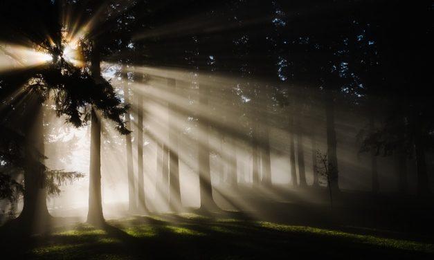 ¿Dónde se encuentra el mundo de los espíritus? El Presidente Nelson da unas respuestas fascinantes