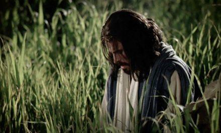 ¿Por qué es necesaria la Expiación en tu vida? (Y no es sólo para los pecados)