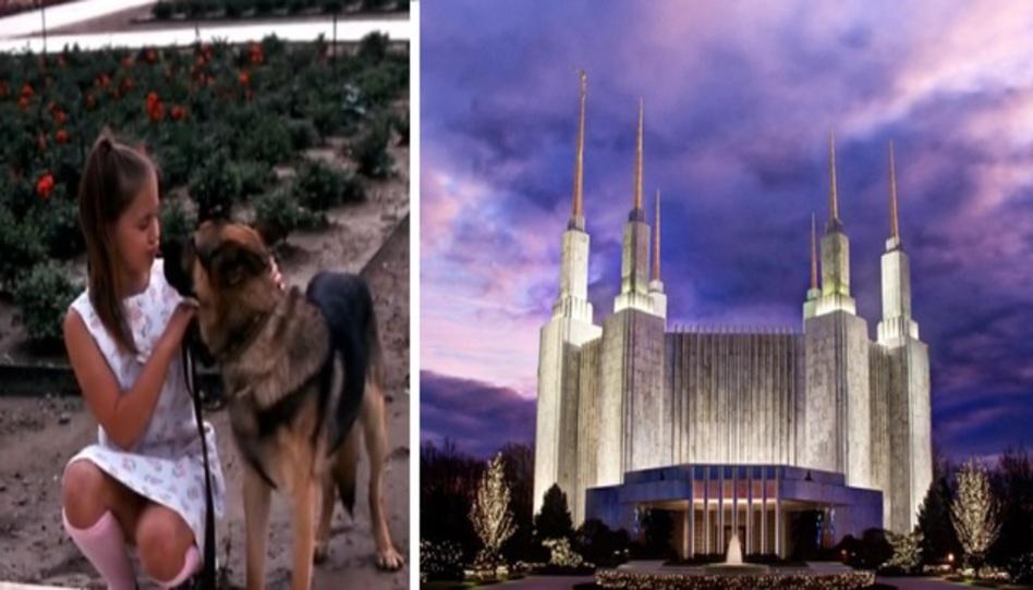 La historia detrás del perro que salvó el Templo de Washington D.C.