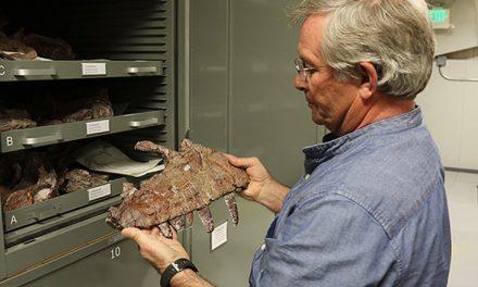 """Paleontólogo Mormón comparte: """"Dios es el científico supremo"""""""