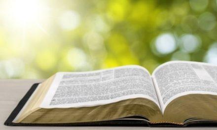 5 palabras que aumentarán tu apreciación por las escrituras