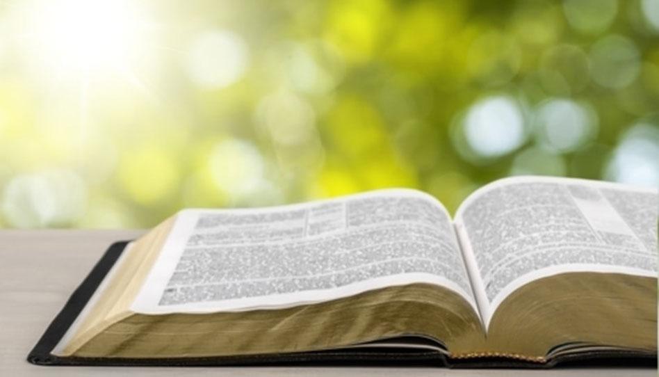 libros canónicos