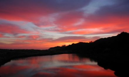 Naturaleza Divina: Nuestros Padres Celestiales
