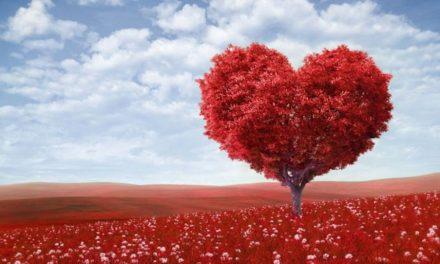 ¿Cómo se puede obtener realmente un corazón puro?