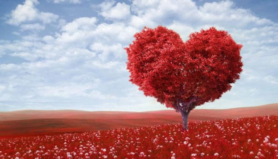 Cómo Alguien Puede Obtener Realmente Un Corazón Puro