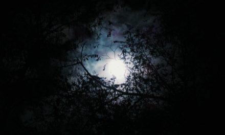El miedo a perderse… en el reino celestial