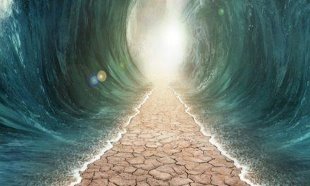 ¿Por qué no vemos milagros en la actualidad como en los tiempos de la Biblia y el Libro de Mormón?