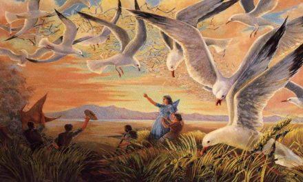 """El """"Milagro de las gaviotas"""" – Los historiadores SUD hablan al respecto"""