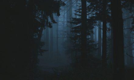 Cómo los vapores de tinieblas pueden aclarar el sueño de Lehi: Perspectivas de John Bytheway