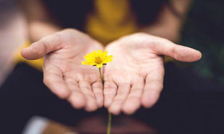 7 Citas que pueden ayudarte en tu camino hacia el perdón