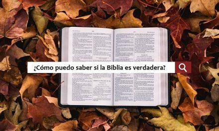 """Busqué en Google """"Cómo puedo saber si la Biblia es verdadera"""" y los resultados fueron decepcionantes"""