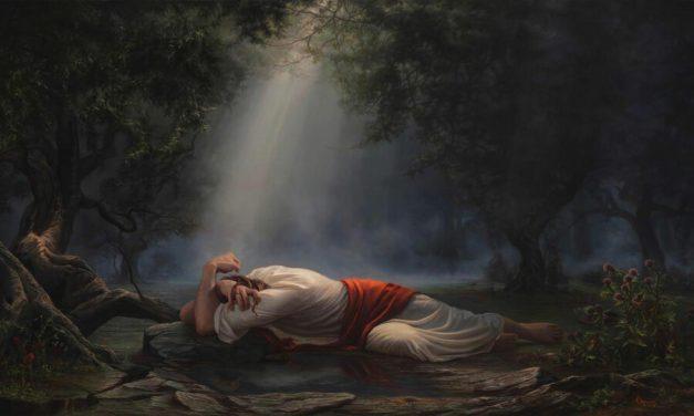 ¿Por qué Jesús? ¿Dios no podía hacer todo por sí mismo?