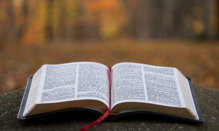 Una manera en la que podríamos malinterpretar los evangelios + cómo comprender la forma en que se escribieron agrega profundidad