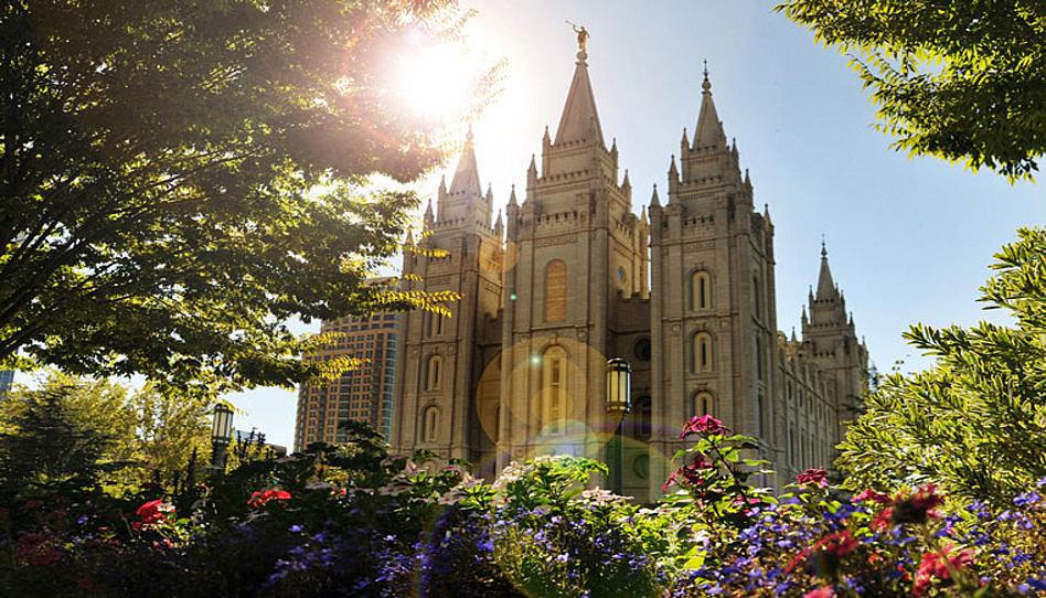 Cómo distinguir la doctrina de la política + por qué hay más de un tipo de doctrina de la Iglesia