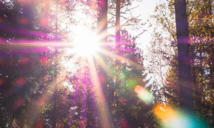 4 recordatorios de cuánto te aman nuestro Padre Celestial y Jesucristo