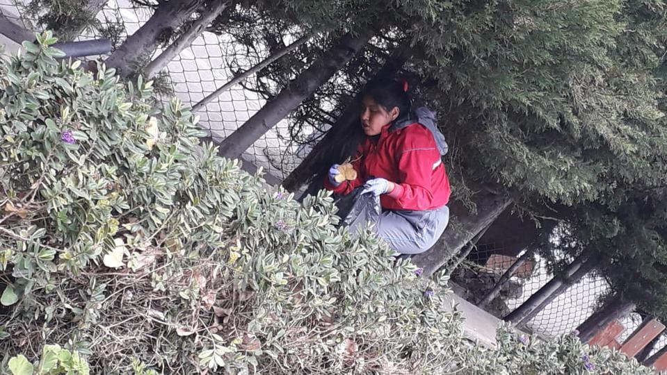 Basurachallenge en Bolivia