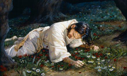 ¿Por qué el Padre Celestial no expió nuestros pecados en lugar de Jesucristo?