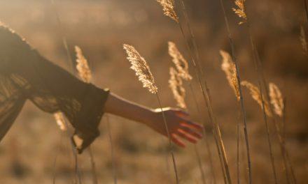 Cómo el accidente de mi hija me enseñó lo que es la verdadera ministración