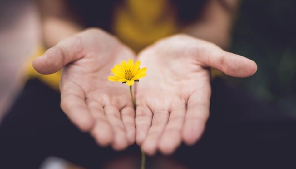 Terapeuta Santo de los Últimos Días: Perdonar no significa confiar