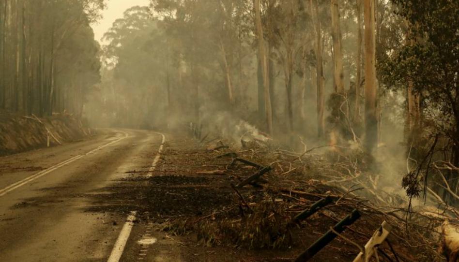 Resultado de imagen para lluvia australia