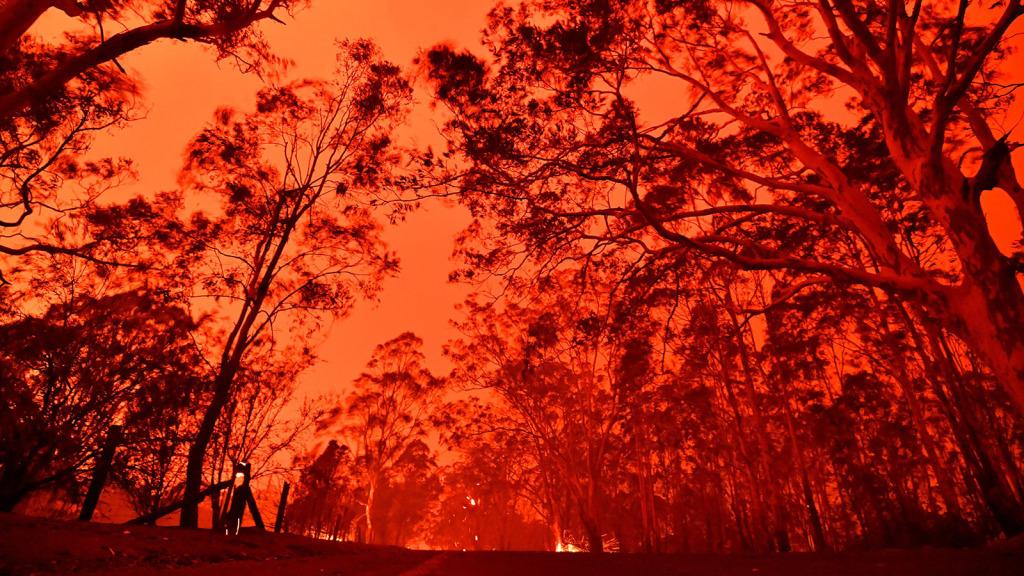 Miembros de la Iglesia de Jesucristo ayunan por las víctimas de los incendios en Australia