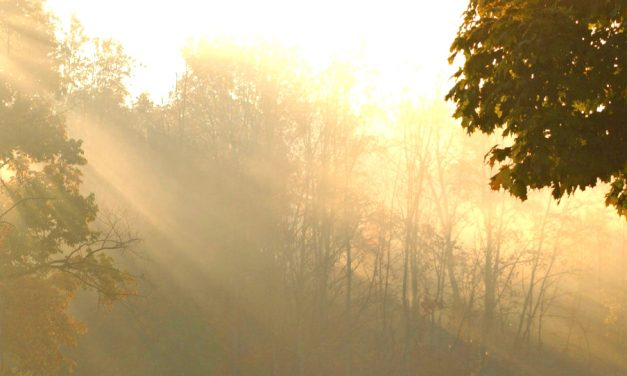 """Reconocer la """"columna de luz"""" en medio de tus desafíos, te ayudará a superarlos"""