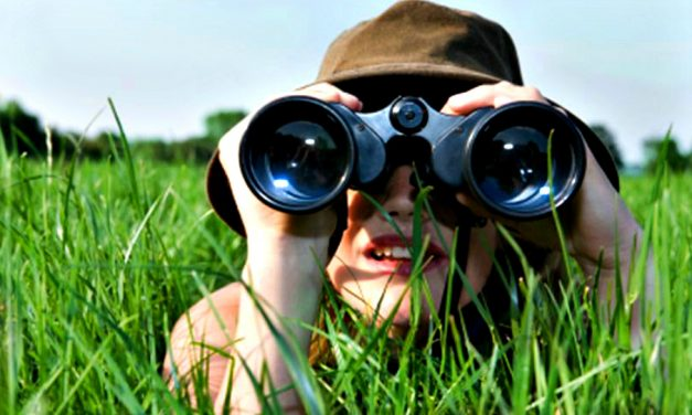 ¿Cómo saber si estás buscando a alguien con potencial o la perfección?