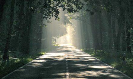 El Padre Celestial es la luz que ilumina el camino que tenemos por delante
