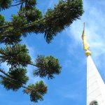 Reapertura de Templo latinoamericano