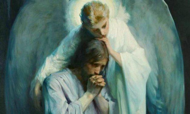 Ángeles: Una ayuda y consuelo de Dios para Sus hijos