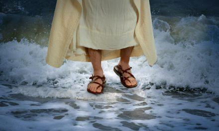 Lo que necesitas saber para ver milagros en tu vida